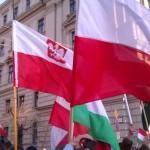 Morze Polsko-Węgierskich flag na wspólnym marszu w Budapeszcie